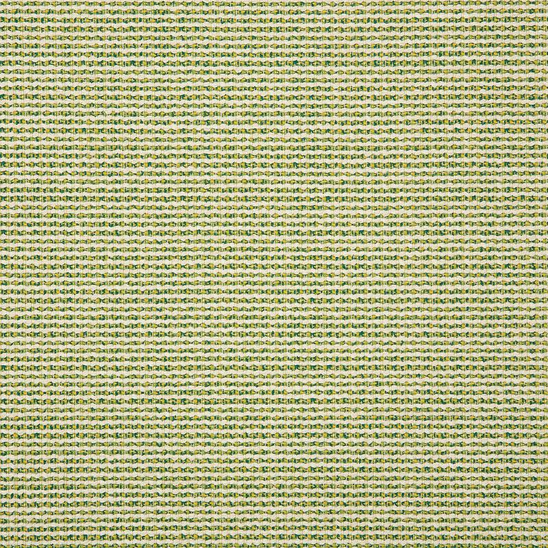 Hybrid-Lime_42077-0000