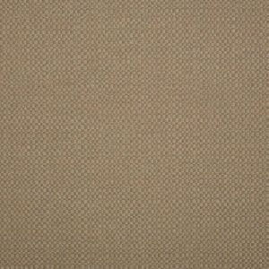 action-taupe_44285-0003