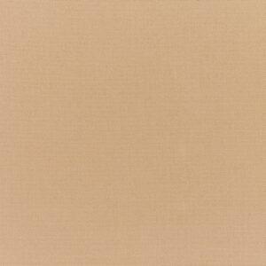 canvas-camel_5468-0000