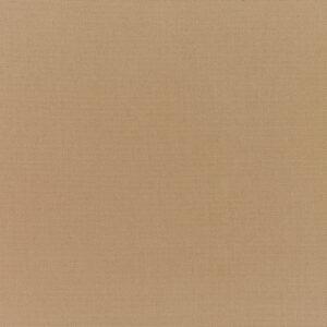 canvas-cocoa_5425-0000