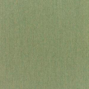 canvas-fern_5487-0000