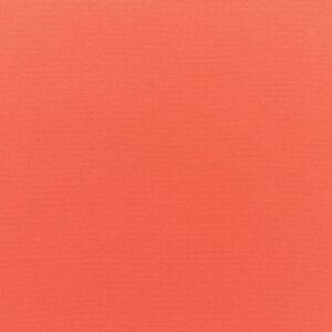 canvas-melon_5415-0000