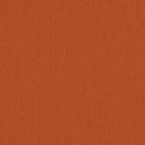 canvas-rust_54010-0000