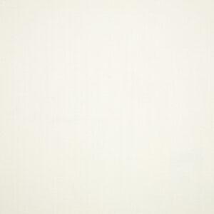 canvas-white_57003-0000