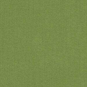spectrum-cilantro_48022-0000